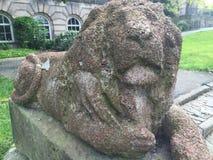 Старый каменный лев Стоковая Фотография