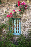 Старый каменный коттедж с взбираясь розами Стоковые Изображения RF