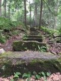 старый камень лестницы Стоковая Фотография