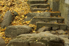 старый камень лестницы Стоковая Фотография RF