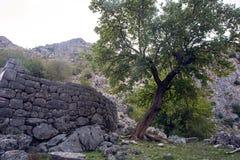 Старый камень обнести горы Kotor Стоковое фото RF