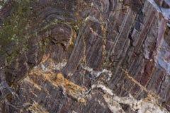 Старый камень с зеленым мхом Стоковая Фотография RF