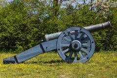 Старый карамболь на зеленой траве Стоковое Фото