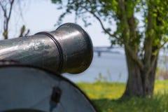 Старый карамболь на зеленой траве Стоковая Фотография RF