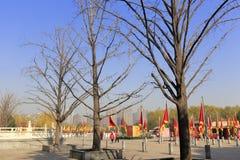 Старый китайский флаг дракона в квадрате парка furong datang Стоковая Фотография