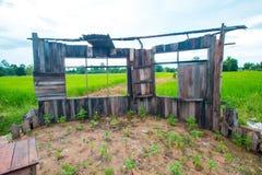 Старый класс в зеленом поле риса Стоковая Фотография