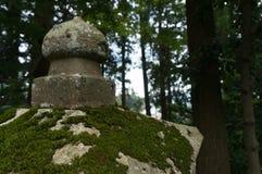 Старый конкретный штендер покрытый мхом, лесом на заднем плане стоковые фото