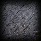 Старый, который сгорели ствол дерева Стоковые Фотографии RF