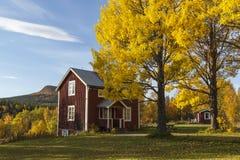Старый коттедж в цветах осени Стоковые Изображения