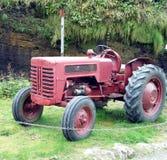 старый красный трактор Стоковые Изображения RF