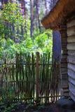 Старый лес дома весной Стоковая Фотография