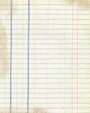 старый лист Стоковая Фотография RF