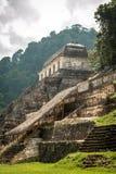 Старый майяский висок в Palenque Стоковая Фотография RF