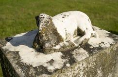 Старый могильный камень мемориала овечки известняка Стоковые Изображения RF