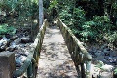 Старый мост над потоком в древесинах Стоковое Изображение