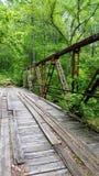 Старый мост на стекле Джека Стоковые Изображения