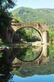 Старый мост отражая в реке Тарне Стоковое Изображение RF