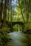 Старый мост утеса над рекой Filveda Стоковое Изображение