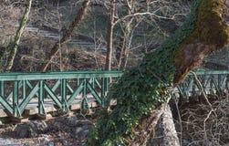 Старый мост утюга в растительности леса среднеземноморской стоковое фото rf