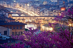 Старый мост Флоренция сверху к ноча Стоковое Изображение RF