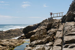 Старый мужской backpacker смотрит на море Стоковые Фотографии RF