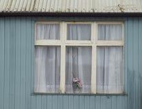 Старый дом в Ирландии Стоковые Фотографии RF