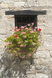 Старый дом в мартах (Италия) Стоковая Фотография RF