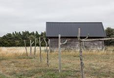 Старый дом в рыбацком поселке Стоковые Изображения