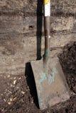 старый лопаткоулавливатель Стоковое Фото