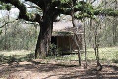 Старый один дом комнаты Стоковое Изображение