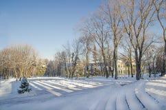 Старый парк зимы Стоковые Фотографии RF