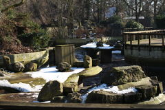 Старый парк зоопарка Стоковое Изображение RF