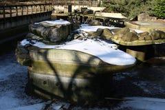 Старый парк зоопарка Стоковые Фото