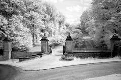 Старый парк на замке Говарда, Йоркшир, Англия, Великобритания Стоковые Изображения