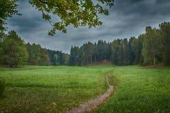 Старый парк с малым резервуаром и деревьями столетия, вопросом - сезонами, обрабатывать искусства стоковая фотография