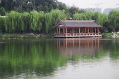 Старый парк с озером и деревьями вербы Стоковое Фото