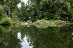 Старый парк с прудами Стоковые Изображения