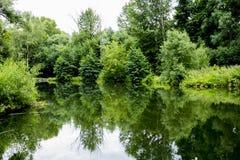 Старый парк с прудами Стоковое Изображение
