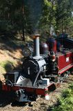 старый поезд пара Стоковое фото RF