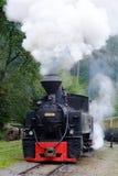 Старый поезд пара стоковое изображение rf