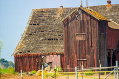 Старый покинутый деревянный амбар с видит до конца крышу Стоковое Изображение RF