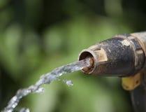 Старый прибор полива сада Стоковые Фото