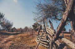 Старый путь Стоковое Изображение