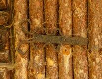 Старый пылевоздушный деревенский выдержанный железный шарнир на деревянной двери Стоковые Изображения