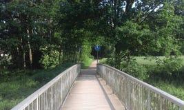 Старый разрушенный мост Стоковая Фотография RF