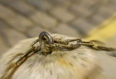 Старый рельс предохранителя звеньев цепи металла закрепленный к камню pedest стоковое фото