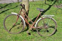 Старый ржавый велосипед стоковые изображения rf