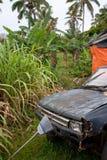 Старый, ржавый и сломленный автомобиль вышел в задворк в Eua в Тонге стоковые фотографии rf