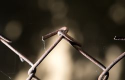 Старый ржавый провод Стоковое Изображение RF