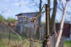 Старый ржавый столб с колючей проволокой Стоковые Фото